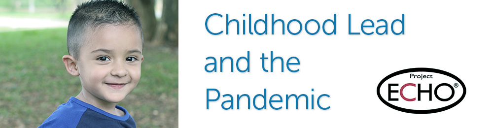Childhood Lead and the Pandemic Banner